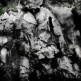 ALFRED KO Stones from Other Hills Photograph on Archival Fine Art Paper 91.5 x 71 cm | 2012